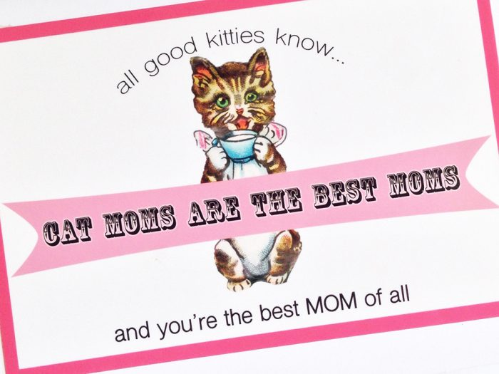 Cat Moms Are the BEST Moms Greeting Card