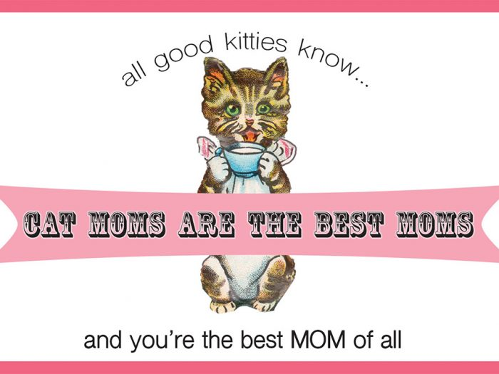 Cat Moms Card Greeting Card
