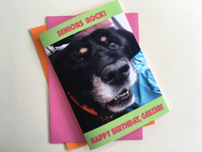 Seniors Rock! Birthday Card