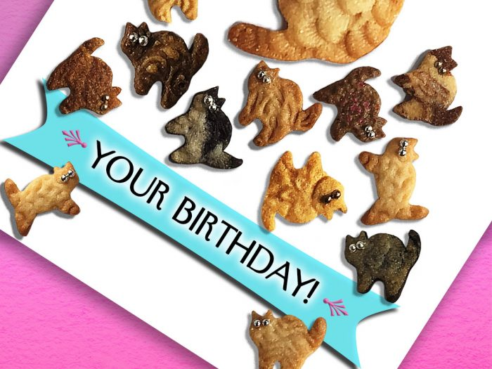 Happier Than Kittens Birthday Card front