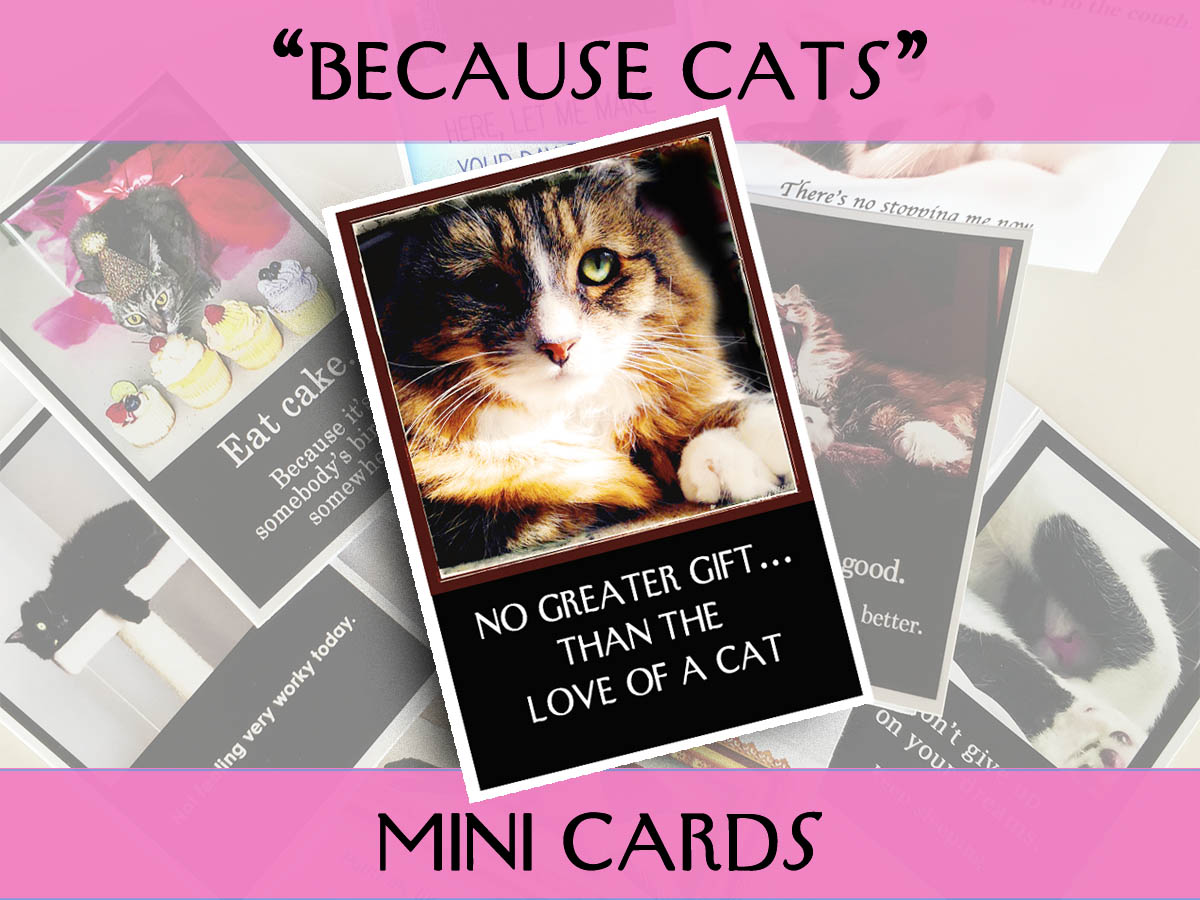 Mini Cards: Because Cats