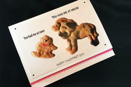 You Had Me at RAWR! Greeting Card