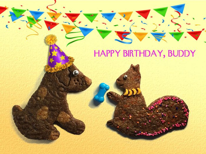 Happy Birthday, Buddy - Dog and Squirrel Greeting Card