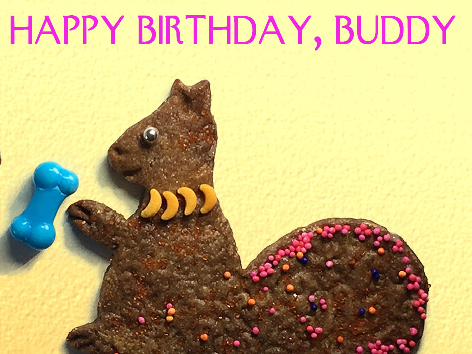 Happy Birthday Buddy Dog And Squirrel Greeting Card Party Pet Cards